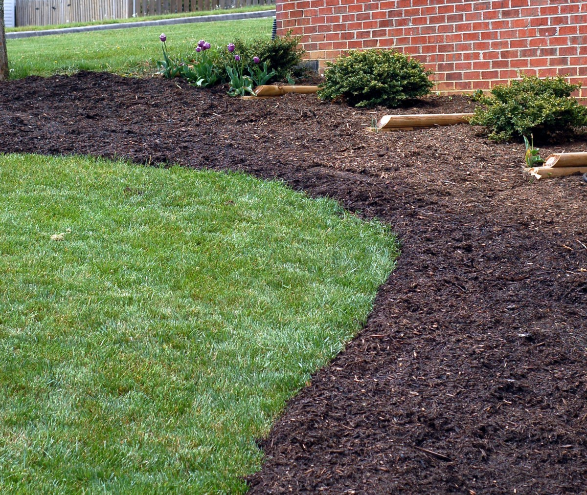 Curved flower bed