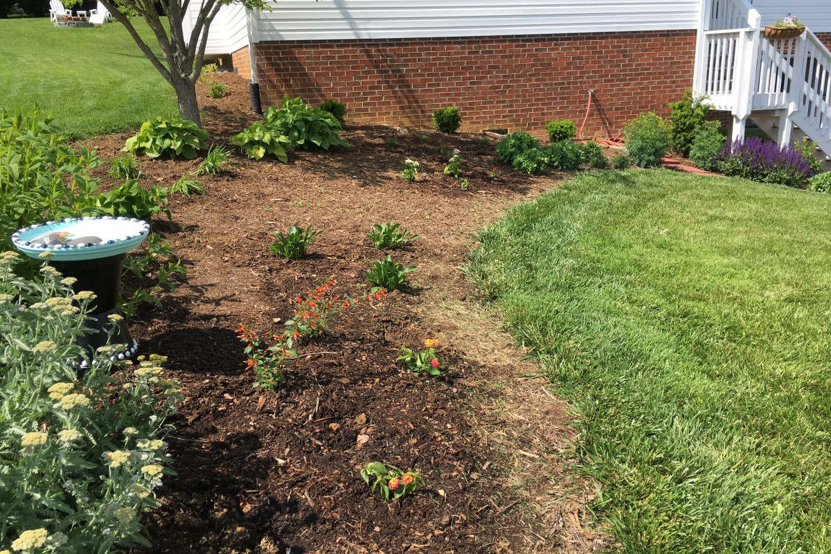 May 13-14 plantings (Mother\'s Day) – Andrea\'s Gardening Blog