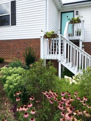 Front bed and flower boxes