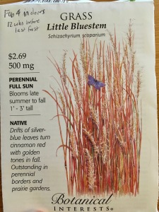 little bluestem seed packet