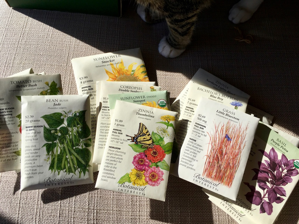 seed packets and cat paws