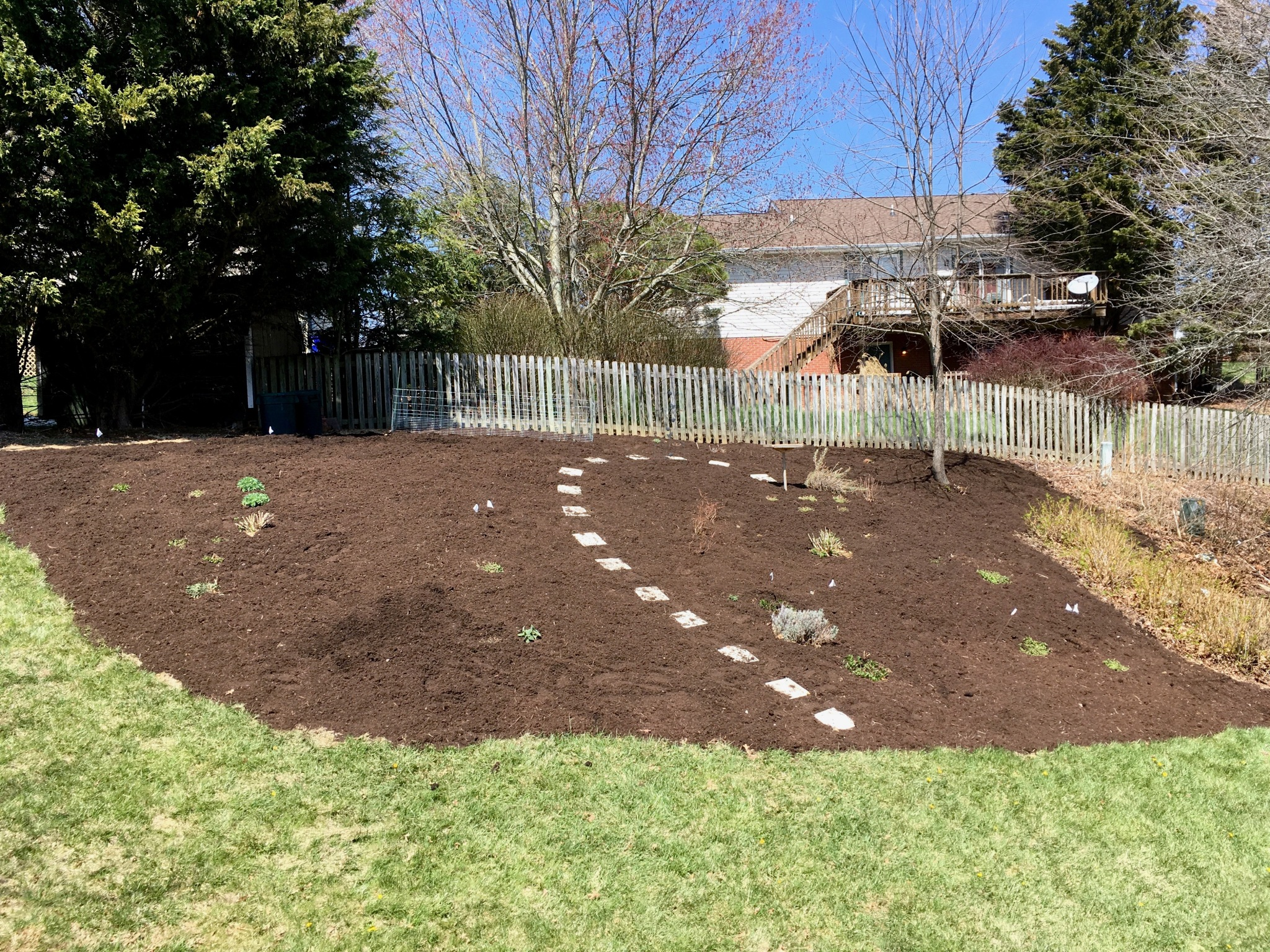back hill mulched