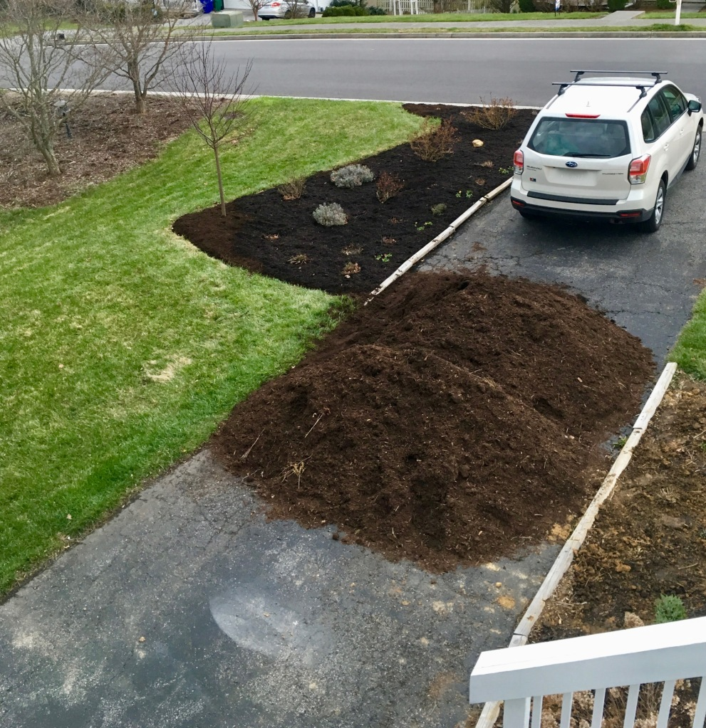 day two mulched herb bed