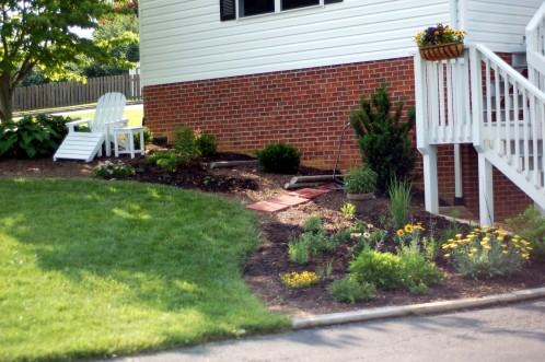 Newly planted front bed