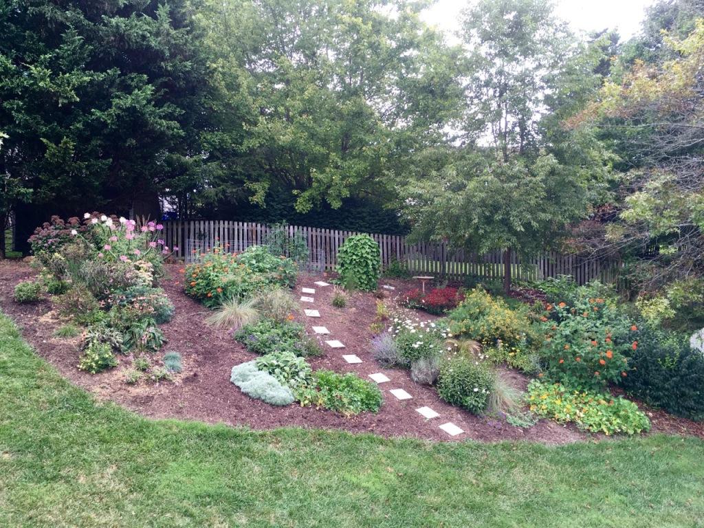 9 Sep 1 back hill garden