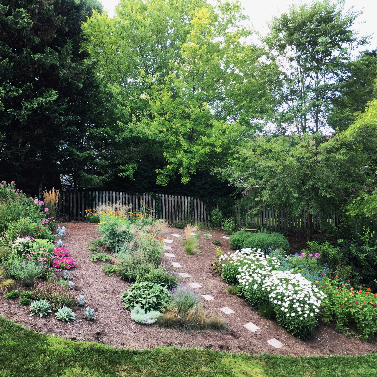 July 27 back garden_1857